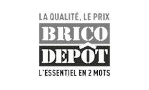 Logo - Bricotdepot